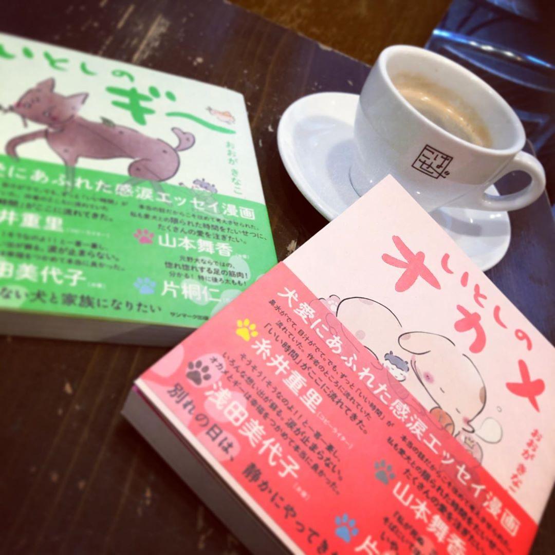 冷たい雨の水曜日( ̄ー ̄。 こんな日はのんびり読書しながら、あったかい珈琲が良い